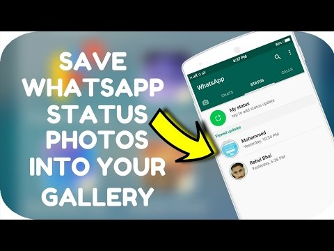 2 Ways To Save Whatsapp Status Videos And Photos On