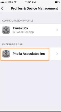Phelia Association