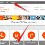 How to Add bank Account and Withdraw Payoneer Fund to local Bank
