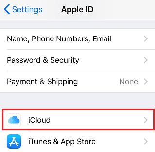 iCloud option
