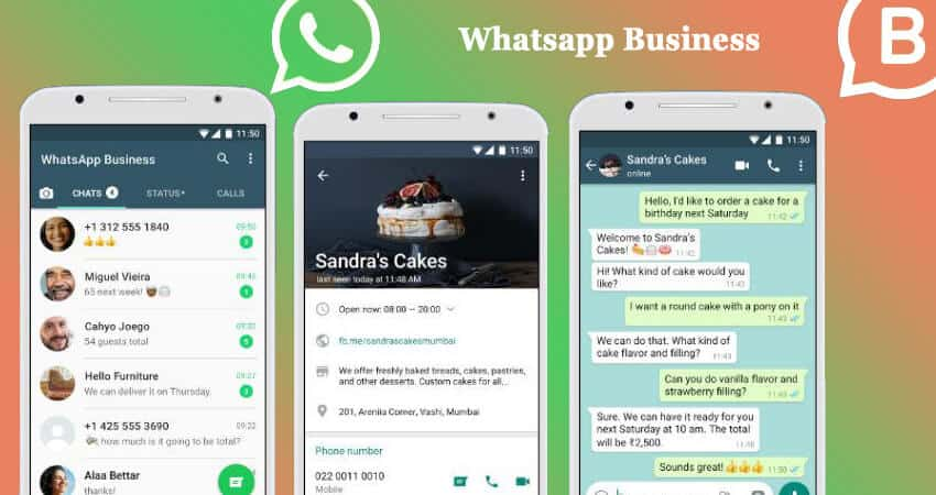 Whatsapp Business App Download And Account Verify Gadgetswright