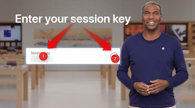 Apple Ara session key