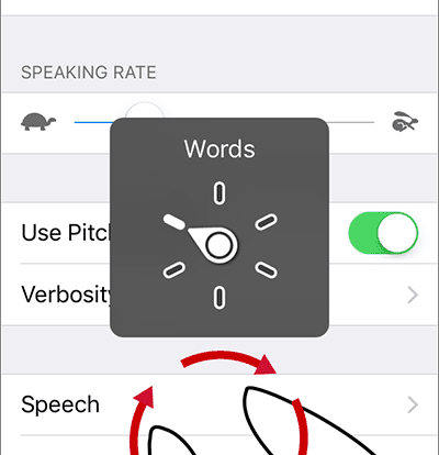 Voiceover Gesture On Iphone And Ipad