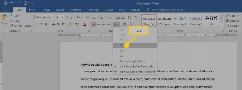 Edit Microsoft words text