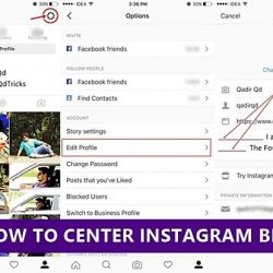 How To Center Instagram Bio