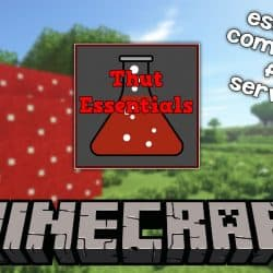 Install EssentialsX on Minecraft Server