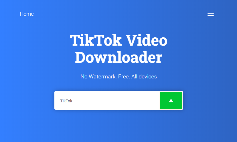 How to download TikTok Videos without a watermark