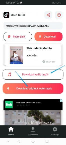 Download TikTok video as audio